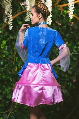 Adult-Women-Classic-Fairy-Tale-Princess-Fairy-Costume-Cosplay-Role-Play-Dress-Up-0-4