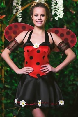 Adult-Women-Ladybug-Princess-Costume-Wings-Cosplay-Role-Play-Lovebug-Dress-Up-0-0