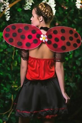 Adult-Women-Ladybug-Princess-Costume-Wings-Cosplay-Role-Play-Lovebug-Dress-Up-0-4