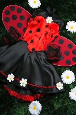 Adult-Women-Ladybug-Princess-Costume-Wings-Cosplay-Role-Play-Lovebug-Dress-Up-0-5