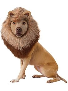 Animal-Planet-Lion-Dog-Costume-0