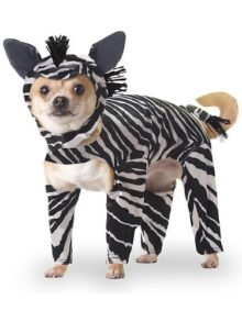 Animal-Planet-PET20100-Zebra-Dog-Costume-0