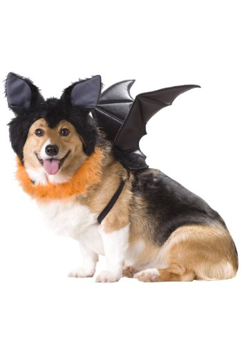 Animal Planet PET20103 Bat Dog Costume