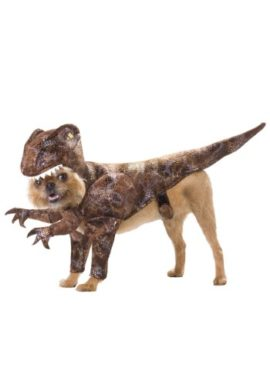 Animal-Planet-PET20109-Raptor-Dog-Costume-0