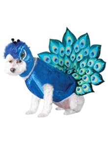 Animal-Planet-Peacock-Dog-Costume-Multicolor-0