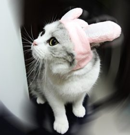 Best-Pink-White-Bunny-Rabbit-Dog-and-Cat-Costume-Funn-with-Stuffed-Ears-Funny-Pet-Cosplay-Costume-with-Stuffed-EarsDress-for-Halloween-Christmas-Easter-Festival-Party-Activity-0-2
