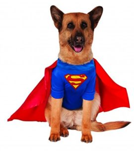 Big-Dogs-Superman-Dog-Costume-0