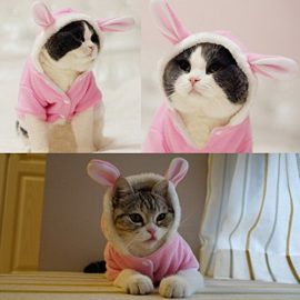BroBear-Plush-Rabbit-Outfit-with-Hood-Bunny-Ears-for-Small-Dogs-Cats-Pink-0-0