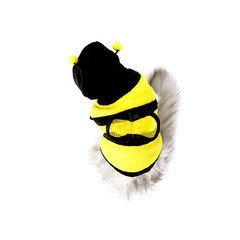 Bumblebee-Cat-Costume-0-1