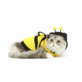Bumblebee-Cat-Costume-0