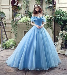 CEZOM-Womens-Cinderella-Quinceanera-Prom-Dress-Tulle-Ball-Gown-Lace-Up-0-1