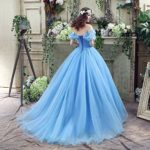 CEZOM-Womens-Cinderella-Quinceanera-Prom-Dress-Tulle-Ball-Gown-Lace-Up-0-2