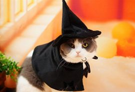 Cute-Hooded-Cloak-Witch-Wizard-Halloween-Holiday-Costume-for-Small-Dogs-Cat-Kitten-Cat-Costume-0-3
