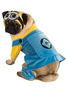 Despicable-Me-2-Minion-Pet-Costume-0
