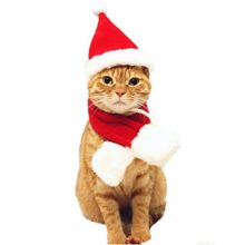 Enjoying-Cat-Santa-Hat-Christmas-Halloween-Customes-0