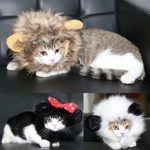 FAMI-Pet-Wig-with-Ears-for-Dogs-or-Cats-Christmas-Costumes-Festival-Party-Clothes-Fancy-Dress-Up-Optional-of-Three-Color-Mickey-Lion-Mane-Panda-0-3