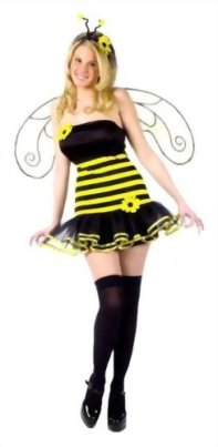 Fun-World-Womens-Honey-Bee-Costume-0