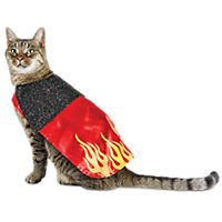 Halloween-Bootique-Devil-Cat-Costume-One-Size-fits-most-0