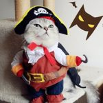Idepet-Funny-Pet-Clothes-Pirate-Dog-Cat-Costume-Suit-Corsair-Dressing-up-Party-Apparel-Clothing-for-Cat-Dog-Plus-Hat-0-0