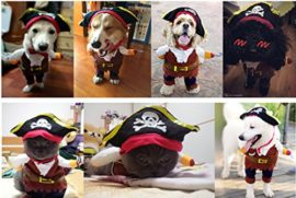 Idepet-Funny-Pet-Clothes-Pirate-Dog-Cat-Costume-Suit-Corsair-Dressing-up-Party-Apparel-Clothing-for-Cat-Dog-Plus-Hat-0-2