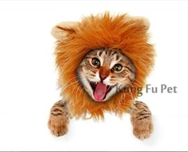 Kung-Fu-Pet-Lion-Mane-Dog-and-Cat-Costume-Turn-your-Cat-or-Small-Dog-into-Golden-King-0-0