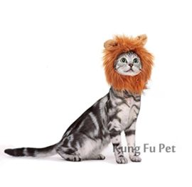 Kung-Fu-Pet-Lion-Mane-Dog-and-Cat-Costume-Turn-your-Cat-or-Small-Dog-into-Golden-King-0-1