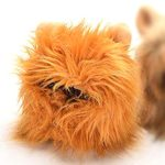 Kung-Fu-Pet-Lion-Mane-Dog-and-Cat-Costume-Turn-your-Cat-or-Small-Dog-into-Golden-King-0-2