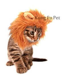 Kung-Fu-Pet-Lion-Mane-Dog-and-Cat-Costume-Turn-your-Cat-or-Small-Dog-into-Golden-King-0