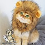 Lion-Mane-Costume-for-Cat-0