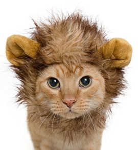 Lion-Mane-Costume-for-Cats-Dogs–FREE-Feathered-Catnip-Toy-Included–Cute-Halloween-Pet-Costume-for-Yorkies-Maltese-Puppies-Cats-Kittens-0-1
