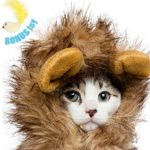 Lion-Mane-Costume-for-Cats-Dogs–FREE-Feathered-Catnip-Toy-Included–Cute-Halloween-Pet-Costume-for-Yorkies-Maltese-Puppies-Cats-Kittens-0