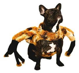 Nicky-Bigs-Novelties-Spider-Tarantula-Dog-Costume-Mutant-Halloween-Pet-Costume-TarantuLucy-Furry-Legs-0-0