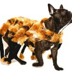 Nicky-Bigs-Novelties-Spider-Tarantula-Dog-Costume-Mutant-Halloween-Pet-Costume-TarantuLucy-Furry-Legs-0-2
