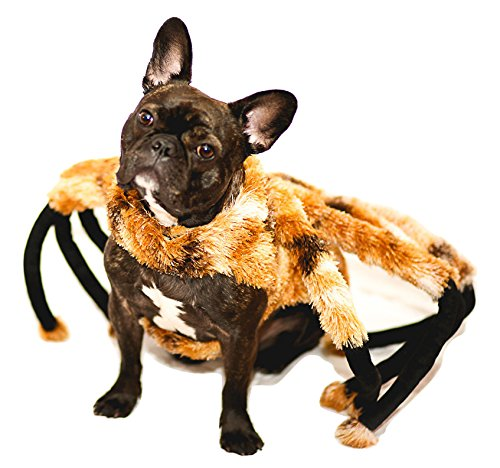 Nicky-Bigs-Novelties-Spider-Tarantula-Dog-Costume-Mutant-Halloween-Pet-Costume-TarantuLucy-Furry-Legs-0