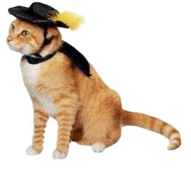Ollypet-Cat-Halloween-Costume-For-Small-Dogs-Pet-Outfit-Cute-Fleece-Hat-and-Collar-Party-Event-Apparel-Funny-Clothes-Accessory-0