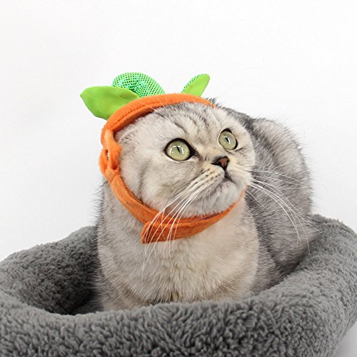 PET-SHOW-Pet-Halloween-Pumpkins-Adjustable-Hat-for-Cats-and-Small-Dogs-Party-Costume-Accessory-Headwear-Pack-of-1-0-1