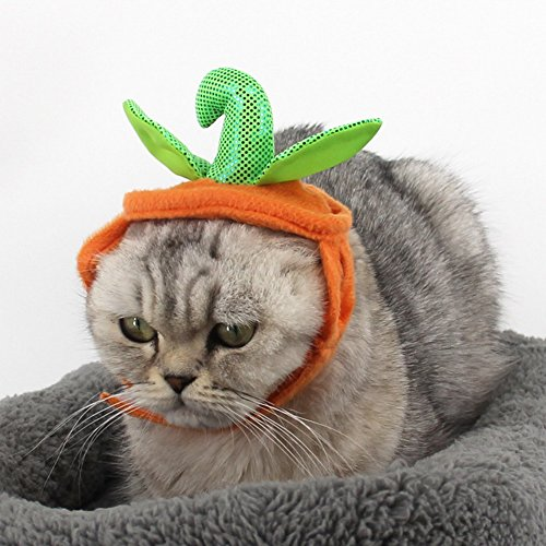 PET-SHOW-Pet-Halloween-Pumpkins-Adjustable-Hat-for-Cats-and-Small-Dogs-Party-Costume-Accessory-Headwear-Pack-of-1-0