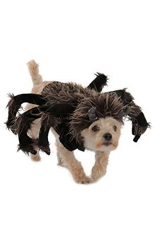 Princess-Paradise-Tarantula-Dog-Costume-0