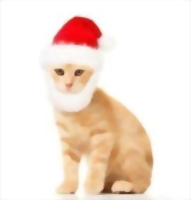 Prymal-Comfort-Santa-Dog-Cat-Costume-0-0