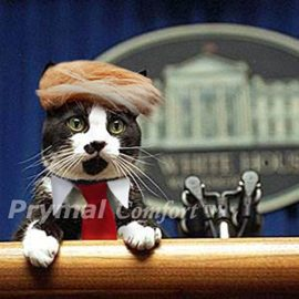 Prymal-Trump-Cat-Costume-for-Halloween-Festival-and-Parties-0-0