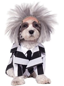 Rubies-Costume-Company-Beetlejuice-Pet-Costume-0