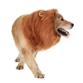 TOMSENN-Dog-Lion-Mane-Realistic-Funny-Lion-Mane-for-Dogs-Complementary-Lion-Mane-for-Dog-Costumes-Lion-Wig-for-Medium-to-Large-Sized-Dogs-Lion-Mane-Wig-for-Dogs-0-0