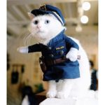 UEETEK-Funny-Dog-Cat-Jeans-Uniform-Pet-Clothes-Costume-Dress-Cosplay-for-Party-CanivalSize-S-0-3