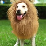 YOUTHINK-Lion-Mane-for-Dog-Large-Medium-with-Ears-Pet-Lion-Mane-Costume-Button-Adjustable-Holiday-Photo-Shoots-Party-Festival-Occasion-Light-Brown-0