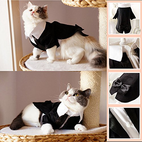iPet-Handsome-Prince-Cat-Bridegroom-Wedding-Tuxedo-Faux-Twinset-Design-Small-Boy-Dog-Formal-Attire-Doggy-Party-Wear-Puppy-Birthday-Outfit-Doggie-Photo-Apparel-with-Buttons-Holiday-Fabric-Clothes-Hallo-0