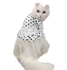 iPet-Princess-Floral-Cat-Party-Bridal-Wedding-Dress-Small-Dog-Flower-Tutu-Ball-Gown-Puppy-Dot-Skirt-Doggy-Photo-Apparel-Stretchy-Clothes-Mesh-Costume-for-Spring-Summer-Wear-0-4