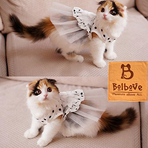 iPet-Princess-Floral-Cat-Party-Bridal-Wedding-Dress-Small-Dog-Flower-Tutu-Ball-Gown-Puppy-Dot-Skirt-Doggy-Photo-Apparel-Stretchy-Clothes-Mesh-Costume-for-Spring-Summer-Wear-0