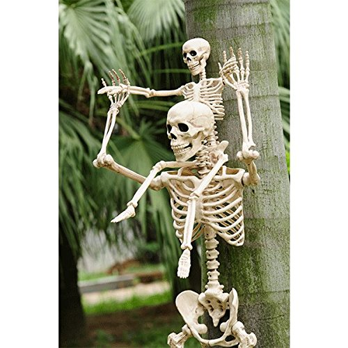Crazy-Bonez-Posable-Skeleton-Decoration-36-0-0