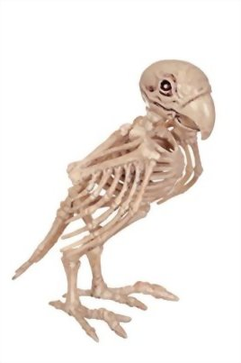 Crazy-Bonez-Skeleton-Parrot-0
