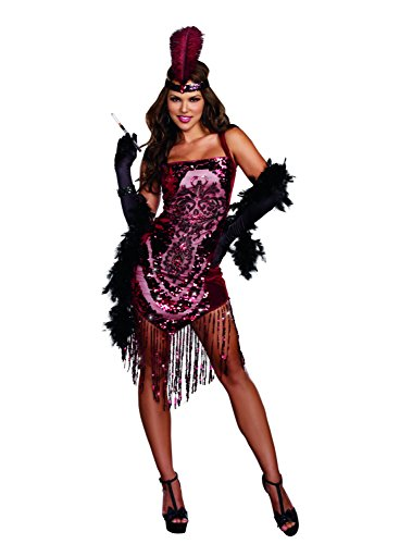 Dreamgirl-Womens-Gatsby-Girl-1920s-Flapper-Costume-0  sc 1 st  Halloween Costumes Best : gatsby halloween costume  - Germanpascual.Com